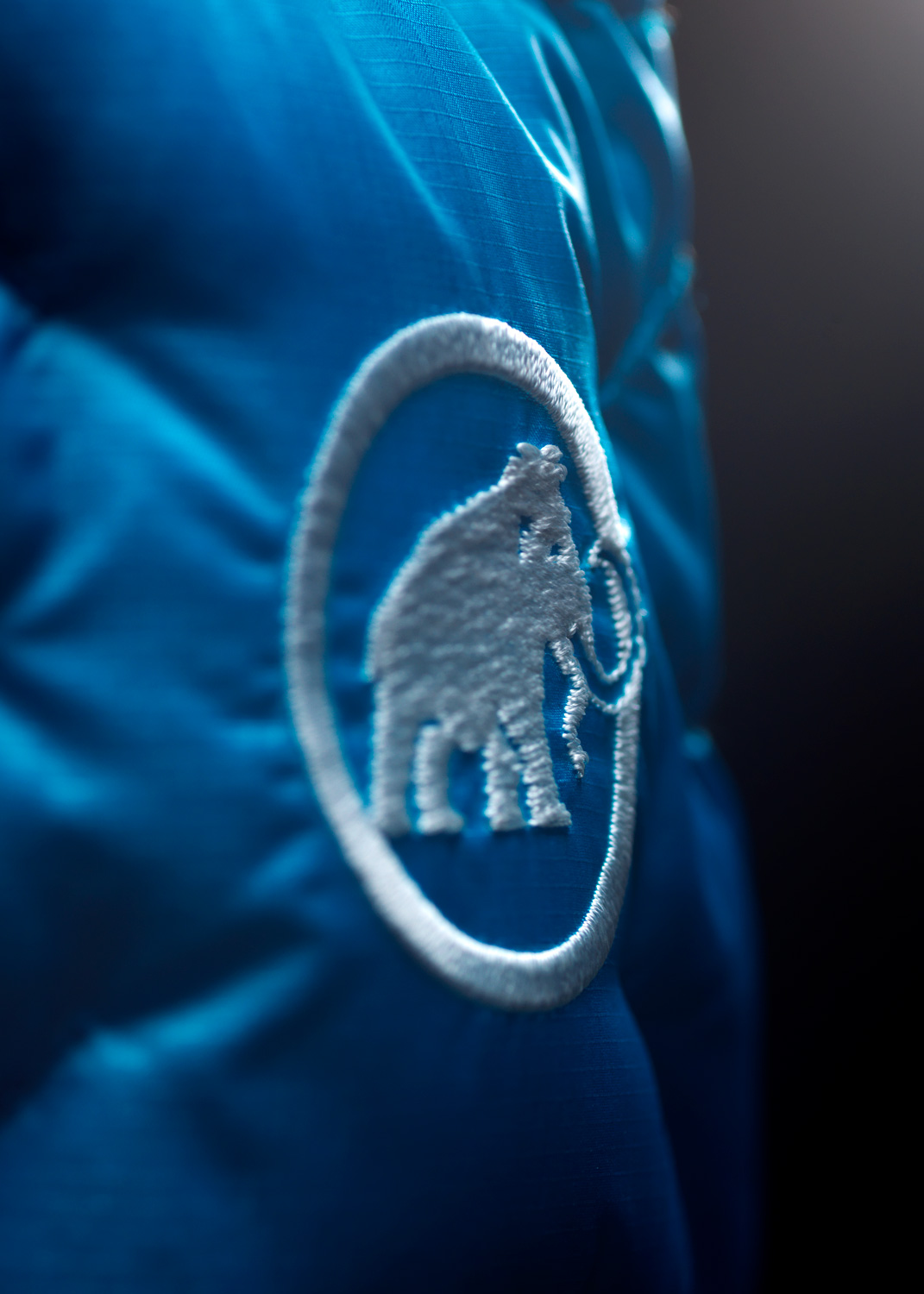 Mammut_Eigerjoch_Advanced_In_Jacket_Branding_2_DL